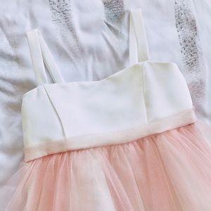 Petit Adele fairy dress costume